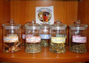 gamme-tisanes-plantes